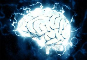 Apprendimentio e plasticita neurale