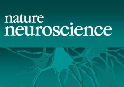 Natire Neuroscience Journal