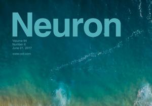 Neuron Journal