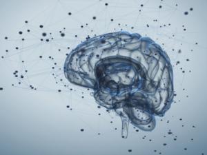 La Riabilitazione Neuropsicologica dopo grave lesione cerebrale – Cagliari 13-14 ottobre 2017